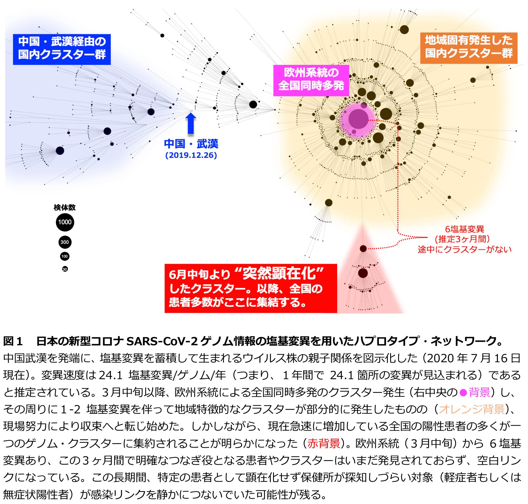 【悲報】新たなタイプの遺伝子配列のコロナ、6月に突然出現 東京から全国に感染拡大が判明